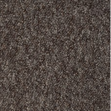 Alabama Dark Brown Berber Carpet Remnant 1.8m x 4.3m