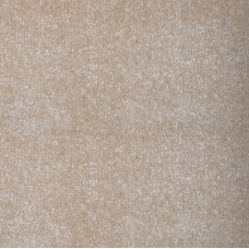 Austin Saxony Cream Carpet