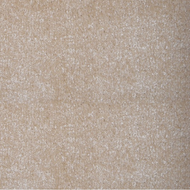 Austin Saxony Cream Carpet Remnant 2.8m x 5m - AN058