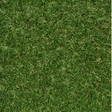 Forest Grass - Bronze 20mm Artificial Grass