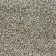 Colossus Minky Grey Saxony Carpet