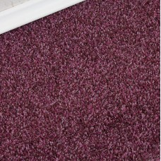 Conquest Purple Twist Pile Carpet