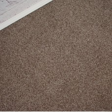 Conquest Light Brown Twist Pile Felt Back Carpet Remnant 3.7m x 5m - JT1513