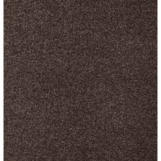 Denver Brown Saxony Carpet Remnant 4.9m x 4m - AN010