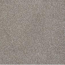 Earl Saxony Beige Carpet