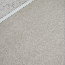 Abingdon Stainfree Melody Irish Cream Saxony Carpet