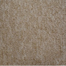 Monet Beige Berber Carpet