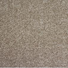 Picasso Saxony Medium Beige Carpet Remnant 2.7m x 3.3m - AN1080