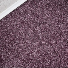 Fells Prime Time Elite Lavender Carpet