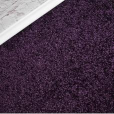 Primetime Plum Purple Carpet