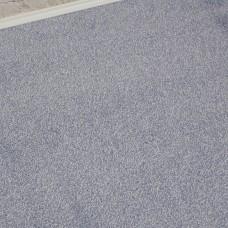 Prime Time Elite Blue Dolphin Carpet